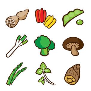 野菜のイラストの写真素材 [FYI00187525]