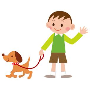 犬の散歩の写真素材 [FYI00187559]