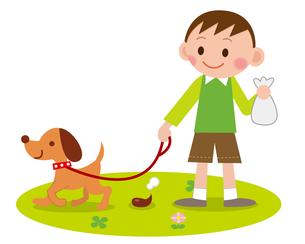 犬の散歩 マナーの写真素材 [FYI00187565]