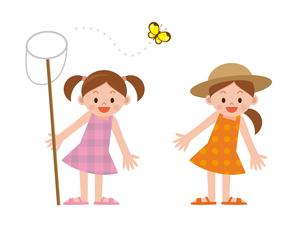 女の子 昆虫採集の写真素材 [FYI00187665]