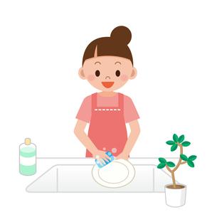 洗い物をする女性の写真素材 [FYI00187680]
