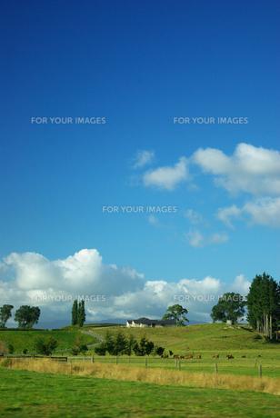 のどかな風景の写真素材 [FYI00188121]