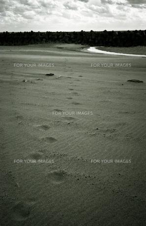 砂浜の足跡の写真素材 [FYI00188196]