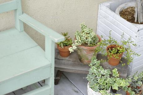 テラスのベンチと鉢植えの写真素材 [FYI00188392]