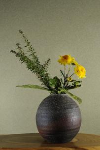 生け花 小菊 インテリア 和 伽羅木 ゴットセフィアナ 花瓶の写真素材 [FYI00188396]