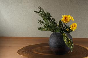 生け花 小菊 インテリア 和 伽羅木 ゴットセフィアナ 花瓶の写真素材 [FYI00188400]