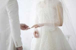 指輪交換 結婚式 新郎新婦の写真素材 [FYI00188407]
