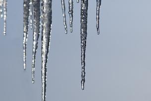 氷柱の写真素材 [FYI00188669]