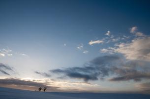 冬空の写真素材 [FYI00188824]