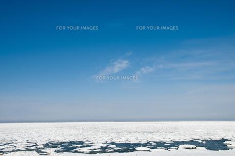 接岸した流氷の素材 [FYI00188841]