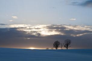 夕暮れの丘の写真素材 [FYI00188844]