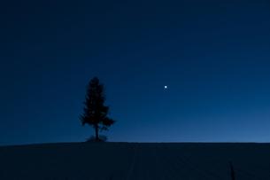 金星の写真素材 [FYI00188877]