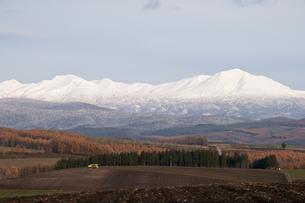 冠雪の大雪山の写真素材 [FYI00188883]