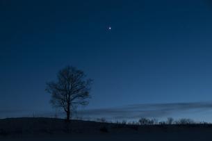 夕暮れの金星の写真素材 [FYI00188890]
