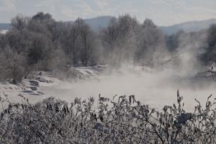 川霧の写真素材 [FYI00188900]