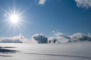 太陽が輝く雪原の写真素材 [FYI00188902]