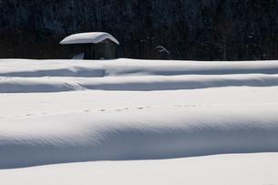 冬景色の素材 [FYI00188906]