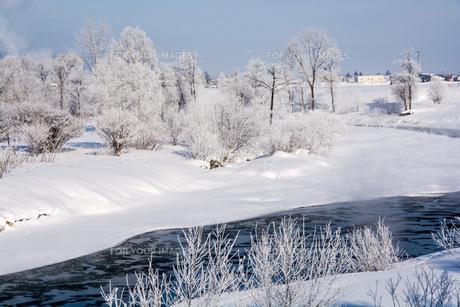 朝の冬景色の素材 [FYI00189017]