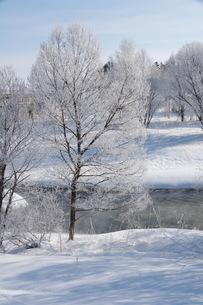 川岸の冬景色の写真素材 [FYI00189025]