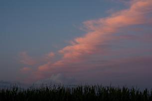 夕陽を反射する雲の写真素材 [FYI00189061]