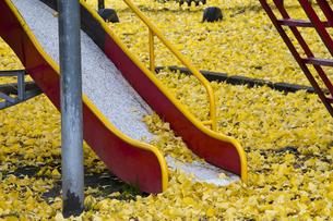 秋の児童公園の写真素材 [FYI00189063]