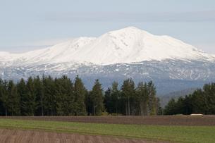 冠雪の大雪山の写真素材 [FYI00189072]