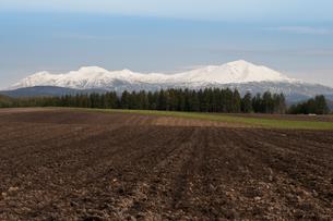 冠雪の大雪山の写真素材 [FYI00189073]