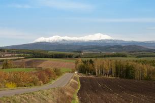 冠雪の大雪山の写真素材 [FYI00189075]