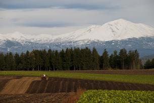 冠雪した大雪山の写真素材 [FYI00189087]