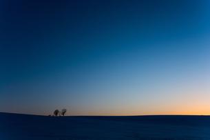 夕暮れの丘の写真素材 [FYI00189175]