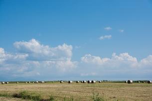 牧草ロールと青空の写真素材 [FYI00189236]
