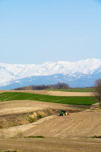 春の山と畑の写真素材 [FYI00189261]