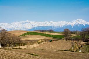 春の山と畑の写真素材 [FYI00189263]