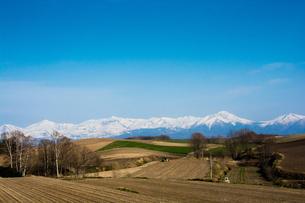 春の山と畑の写真素材 [FYI00189272]