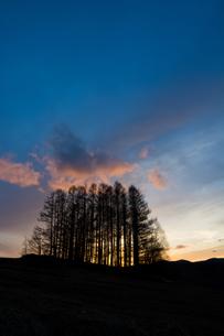 夕暮れの丘の写真素材 [FYI00189282]