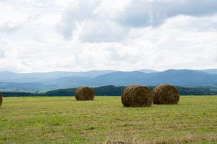 牧草ロールのある風景の写真素材 [FYI00189301]