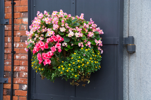 ドアの花飾りの写真素材 [FYI00189315]