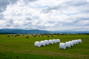 牧草ロールのある風景の写真素材 [FYI00189316]