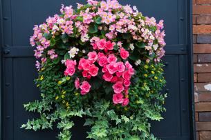 ドアの花飾りの写真素材 [FYI00189319]