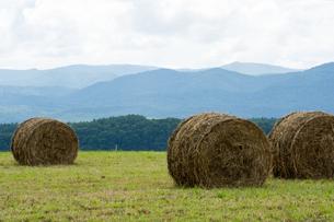 牧草ロールのある風景の写真素材 [FYI00189320]