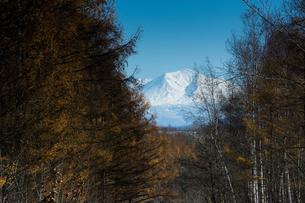 雪をかぶった山頂の写真素材 [FYI00189354]