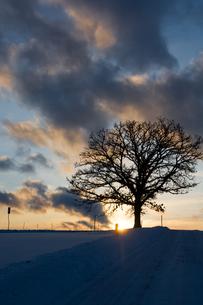 夕暮れの雪道の写真素材 [FYI00189362]