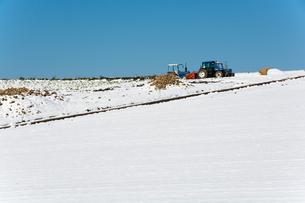 冬の畑のトラクターの写真素材 [FYI00189377]