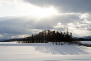 光る雪原の写真素材 [FYI00189444]
