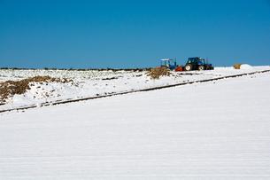 雪原のトラクターの写真素材 [FYI00189452]