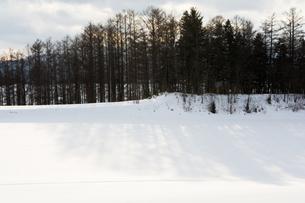 光る雪原の写真素材 [FYI00189454]