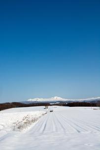 青空と雪原の写真素材 [FYI00189466]