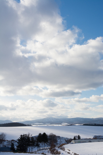 光る冬の大地の写真素材 [FYI00189477]