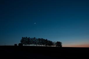 夕暮れの丘と木香月の写真素材 [FYI00189536]