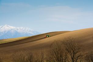 残雪の山と春の畑の写真素材 [FYI00189573]